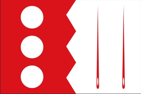 Escudo y bandera 2