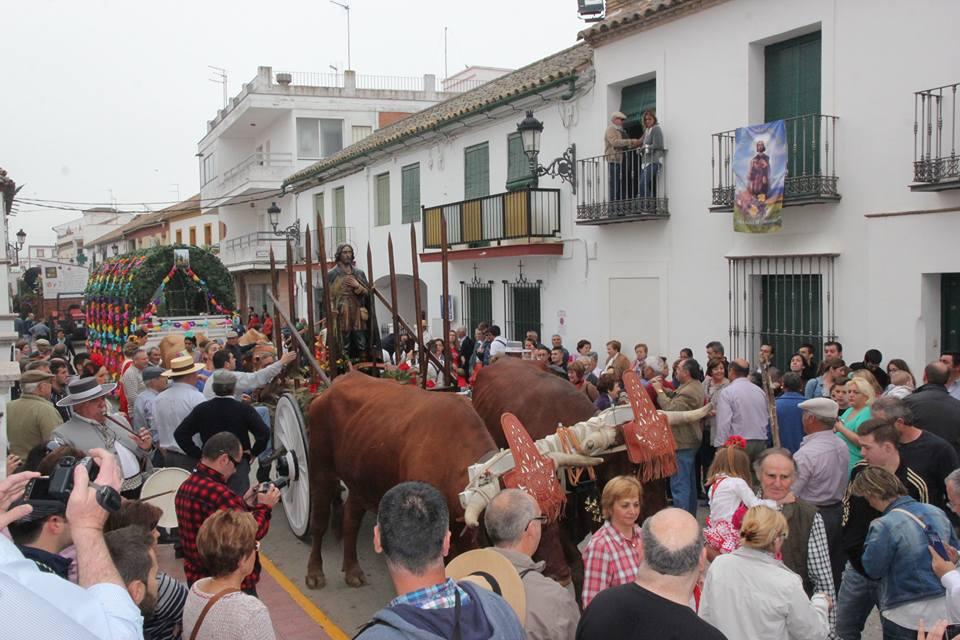 Viva San Isidro 3
