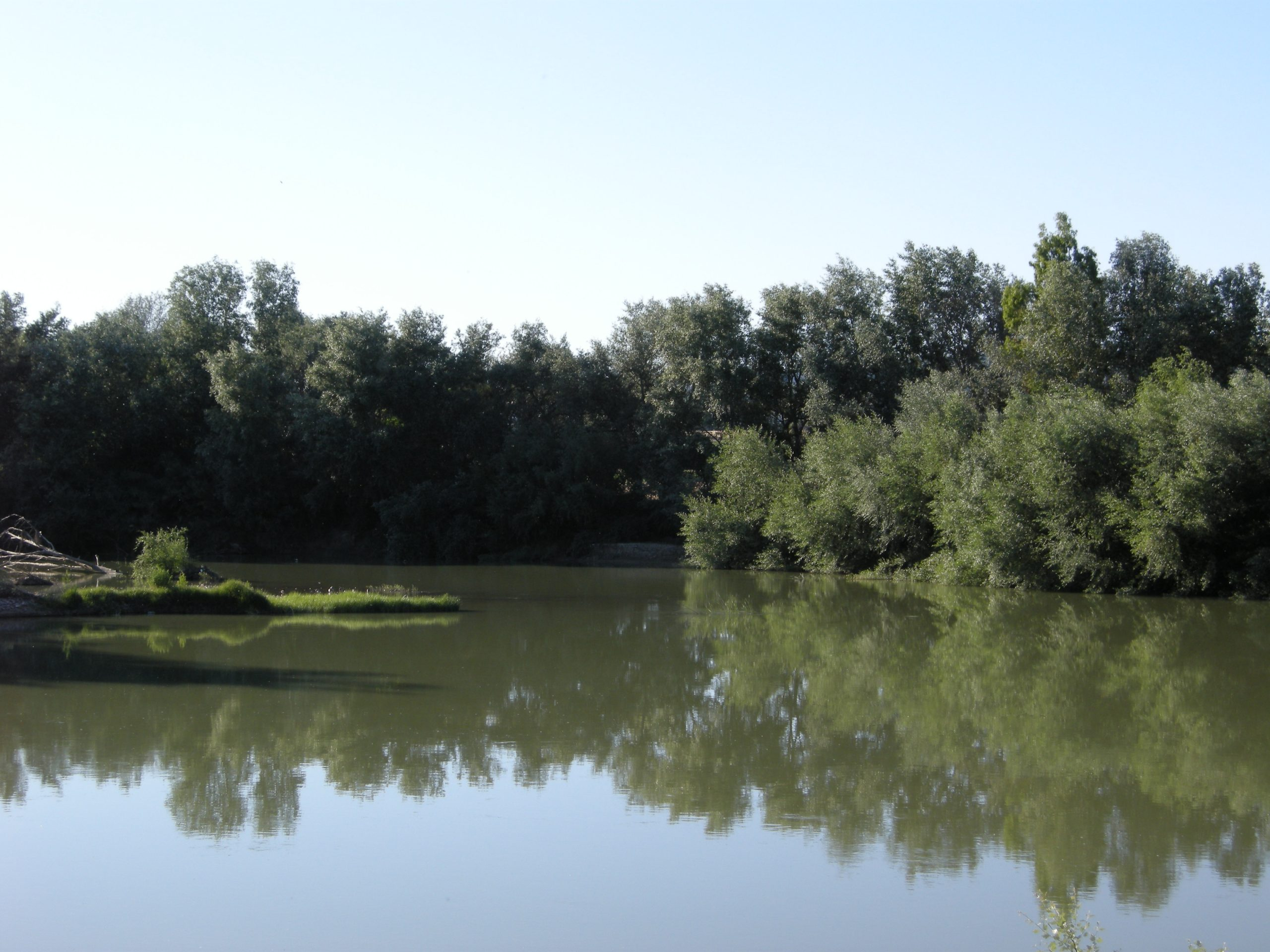 Río de vida 2