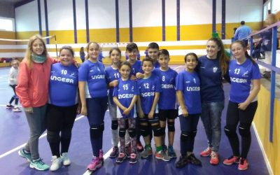 Torneo Voleibol