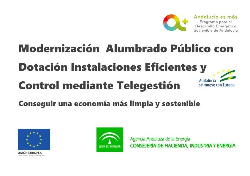 Subvención Modernización del Alumbrado Público Municipal para la dotación de Instalaciones Energéticamente eficientes y su Control Mediante Sistemas de Telegestión. 1